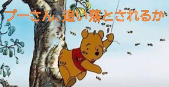 00000 プーさん注目の的.jpg