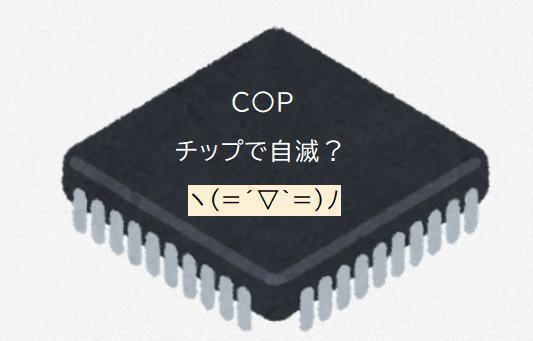 00000チップ.jpg